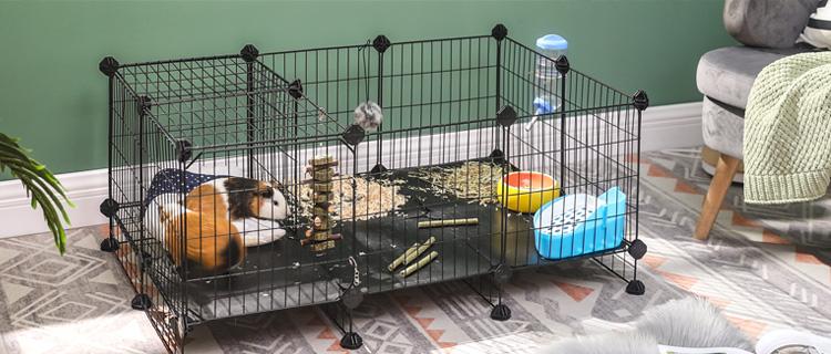 Little Pet Supplies