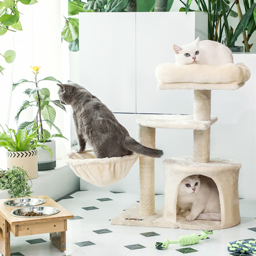Have one of our cat trees as your kitty's sweet home.